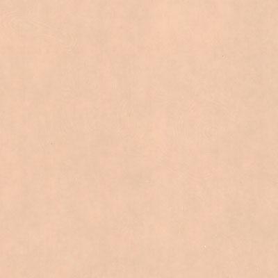 Verzierwachsplatte, Nr. 22, apricot, 200 x 100 x 0,5 mm