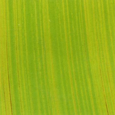 Verzierwachsplatte, Nr. 1003, Bemalt auf g/s, 200 x 100 x 0,5 mm