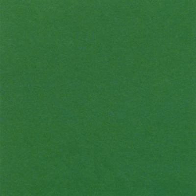 Verzierwachsplatte, Nr. 0600, glanzgrün, 200 x 100 x 0,5 mm
