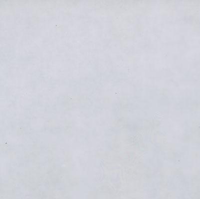 Verzierwachsplatte, 200x100x0,5, Nr. 00, transparent